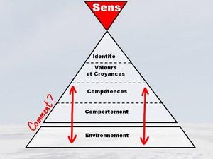 Pyramide écosytème en expédition