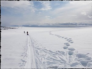 Expédition LMDS au Svalbard